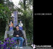 [ 台中 ] 新社薰衣草森林--薰衣草節:DSCF6784.JPG