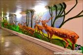 台南散步路線,古蹟、文創、彩繪新生命:DSC_0954.JPG