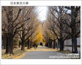 [ 日本東京自由行 ] Day4 part3 東京大學:DSC_0517.JPG
