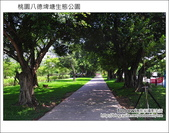 桃園八德埤塘生態公園:DSC_2004.JPG