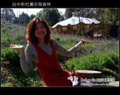 [ 台中 ] 新社薰衣草森林--薰衣草節:DSCF6463.JPG