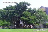 新竹陽光國小溜滑梯:DSC_0806.JPG
