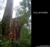 [ 北橫 ] 桃園復興鄉拉拉山森林遊樂區:DSCF7846.JPG