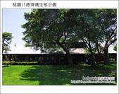 桃園八德埤塘生態公園:DSC_2006.JPG