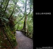 [ 北橫 ] 桃園復興鄉拉拉山森林遊樂區:DSCF7943.JPG