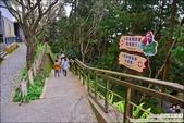南投鳳凰谷鳥園生態園區:DSC_7973.JPG