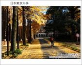 [ 日本東京自由行 ] Day4 part3 東京大學:DSC_0484.JPG