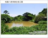 桃園八德埤塘生態公園:DSC_2008.JPG