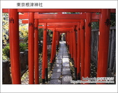 日本東京之旅 Day4 part2 根津神社:DSC_0325.JPG