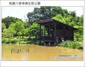 桃園八德埤塘生態公園:DSC_2009.JPG