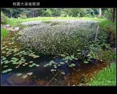 [ 北橫 ] 桃園大溪後慈湖:DSCF5077.JPG