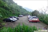 新竹尖石油羅溪森林:DSC08078.JPG