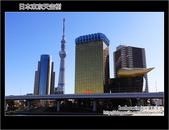 Day5 part3 日本東京天空樹:DSC_1440.JPG