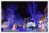 日本福岡博多站聖誕燈火:DSC_5182.JPG
