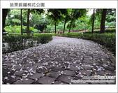 2012.04.29 苗栗桐花公園花況:DSC_1777.JPG