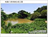 桃園八德埤塘生態公園:DSC_2010.JPG