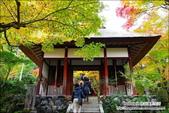 京都:天龍寺06.jpg