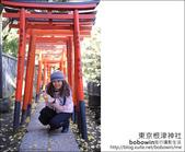 日本東京之旅 Day4 part2 根津神社:DSC_0326.JPG