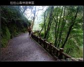 [ 北橫 ] 桃園復興鄉拉拉山森林遊樂區:DSCF7946.JPG