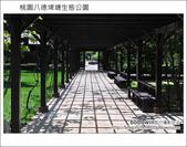 桃園八德埤塘生態公園:DSC_2012.JPG