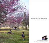 南投暨南大學席地賞櫻:DSC_2436.JPG