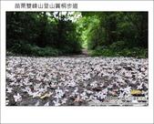 2012.04.29 苗栗雙峰山登山步道:DSC_1866.JPG