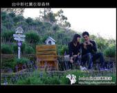 [ 台中 ] 新社薰衣草森林--薰衣草節:DSCF6466.JPG