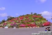 Okinawa Day3:DSC_0139.JPG