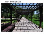 桃園八德埤塘生態公園:DSC_2013.JPG
