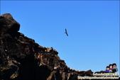 澎湖北海秘涇漂流 Day2:DSC_3357.JPG