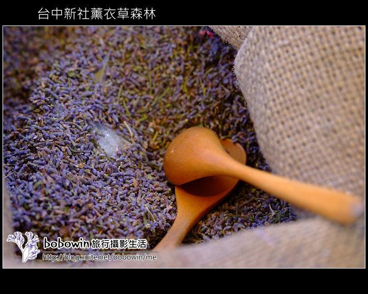 [ 台中 ] 新社薰衣草森林--薰衣草節:DSCF6696.JPG