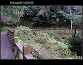 [ 北橫 ] 桃園復興鄉拉拉山森林遊樂區:DSCF7952.JPG