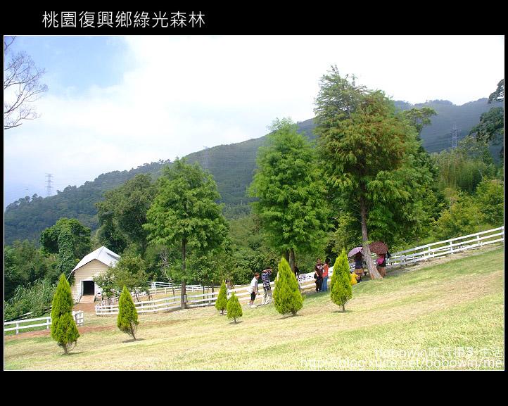 2009.08.15 綠光森林:DSCF6597.JPG