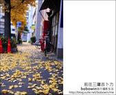 日本東京之旅 Day3 part1 井之頭恩賜公園:DSC_9589.JPG
