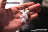 宜蘭兔子迷宮景觀餐廳:DSC_5261.JPG
