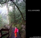 [ 北橫 ] 桃園復興鄉拉拉山森林遊樂區:DSCF7857.JPG