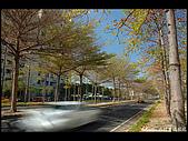 20080213_台南東豐路:DSC_2869.jpg