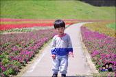 台北內湖大溝溪公園:DSC_2250.JPG