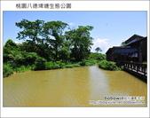 桃園八德埤塘生態公園:DSC_2028.JPG