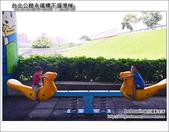 台北公館永福橋下溜滑梯:DSC_1553.JPG