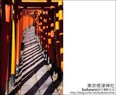 日本東京之旅 Day4 part2 根津神社:DSC_0356.JPG