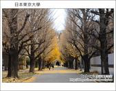 [ 日本東京自由行 ] Day4 part3 東京大學:DSC_0518.JPG