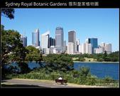 [ 澳洲 ] 雪梨皇家植物園 Sydney Royal Botanic Gardens:DSCF5106.JPG