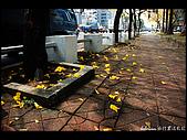 20080213_台南東豐路:DSC_3661.jpg