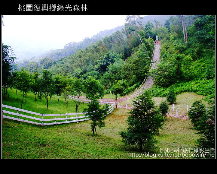 2009.08.15 綠光森林:DSCF6605.JPG