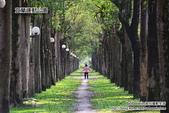 2014.08.09 宜蘭運動公園:DSC_4751.JPG
