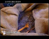 [ 台中 ] 新社薰衣草森林--薰衣草節:DSCF6699.JPG