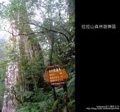 [ 北橫 ] 桃園復興鄉拉拉山森林遊樂區:DSCF7859.JPG