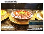 日本東京SKYTREE:DSC06865.JPG