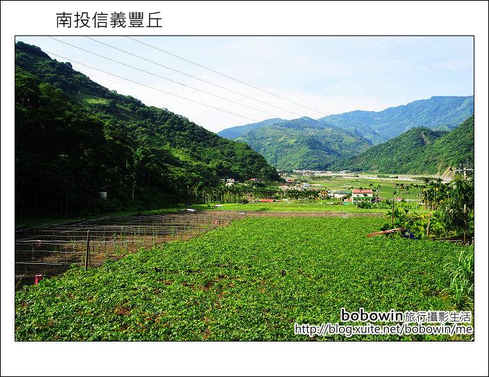 2011.08.14 南投信義新鄉村:DSC_0763.JPG